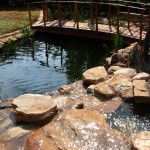 Eco pond and custom built bridge