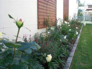 Cottage garden Kylami