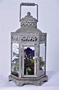 Lantern terrarium