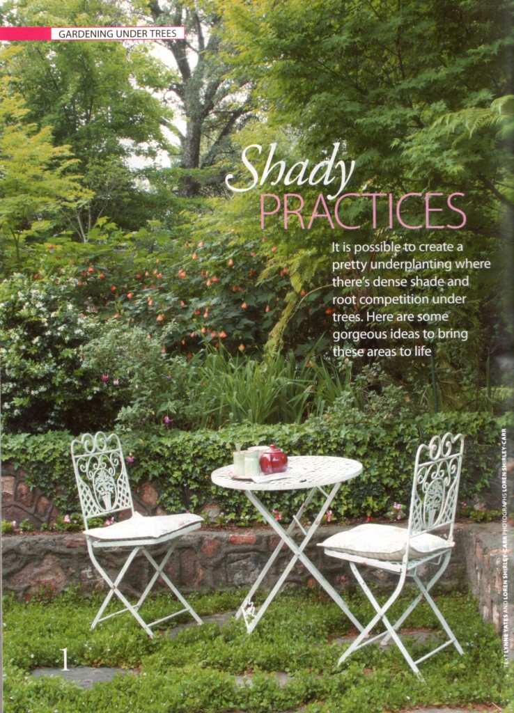 Shady practices1