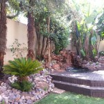 low maintenance garden Bryanston