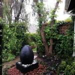 Informal Shady garden